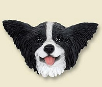 Papillon Black & White Doogie Head