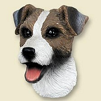 Jack Russell Terrier Brown & White w/Rough Coat Doogie Head
