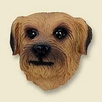 Norfolk Terrier Doogie Head