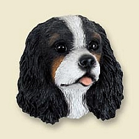 Cavalier King Charles Spaniel Black & White Doogie Head