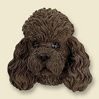 Poodle Chocolate w/Sport Cut Magnet