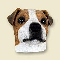 Jack Russell Terrier Brown & White w/Smooth Coat Magnet
