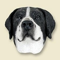 Pointer Black & White Magnet