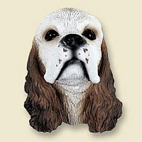Cocker Spaniel Brown & White Magnet