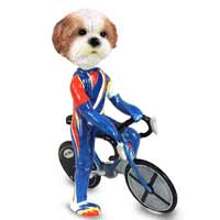 Shih Tzu Tan w/Sport Cut Bicycle Doogie Collectable Figurine