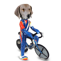 Weimaraner Bicycle Doogie Collectable Figurine