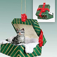 Silver Shorthaired Tabby Cat Gift Box Green Ornament