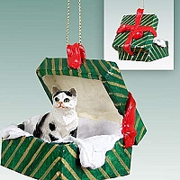 Black & White Shorthaired Tabby Cat Gift Box Green Ornament