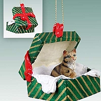 Brown Shorthaired Tabby Cat Gift Box Green Ornament