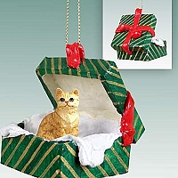 Red Shorthaired Tabby Cat Gift Box Green Ornament