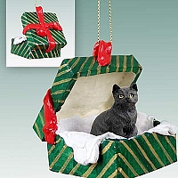 Black Shorthaired Tabby Cat Gift Box Green Ornament
