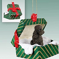 Poodle Chocolate w/Sport Cut Gift Box Green Ornament