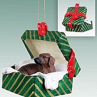 Dachshund Red Gift Box Green Ornament