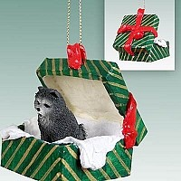 Chow Blue Gift Box Green Ornament