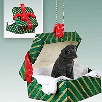 Labrador Retriever Black Gift Box Green Ornament