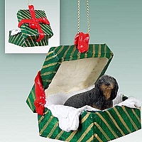 Dachshund Longhaired Black Gift Box Green Ornament