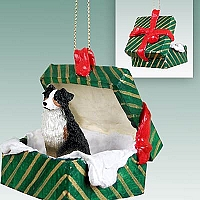 Australian Shepherd Tricolor Gift Box Green Ornament