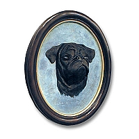 Pug Black Portrait