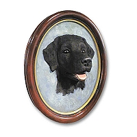 Labrador Retriever Black Portrait