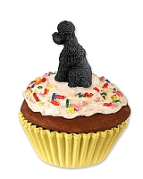 Poodle Black w/Sport Cut Pupcake Trinket Box