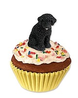 Portuguese Water Dog Pupcake Trinket Box