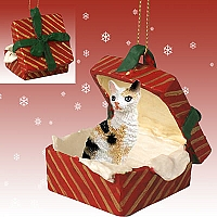 Tortoise & White Cornish Rex Gift Box Red Ornament