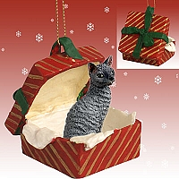 Blue Cornish Rex Gift Box Red Ornament