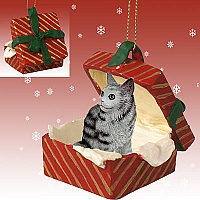 Silver Tabby Maine Coon Cat Gift Box Red Ornament