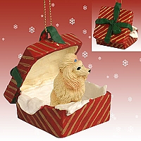 Poodle Apricot Gift Box Red Ornament