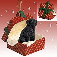 Flat Coated Retriever Gift Box Red Ornament