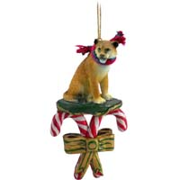 Lioness Candy Cane Ornament