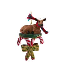 Guernsey Cow Candy Cane Ornament