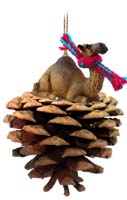 Camel Dromedary Pinecone Pet Ornament