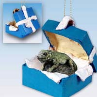 Iguana Gift Box Blue Ornament