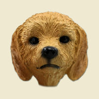 Goldendoodle Doogie Head