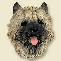 Cairn Terrier Red Doogie Head