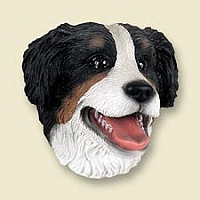 Bernese Mountain Dog Doogie Head