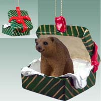 Bear Brown Gift Box Green Ornament