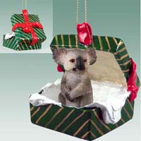 Koala Gift Box Green Ornament