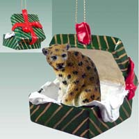 Leopard Gift Box Green Ornament