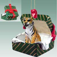 Tiger Gift Box Green Ornament