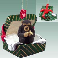 Chimpanzee Gift Box Green Ornament