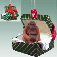 Orangutan Gift Box Green Ornament