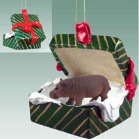 Hippopotamus Gift Box Green Ornament