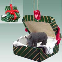 Rhinoceros Gift Box Green Ornament