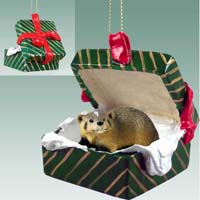 Badger Gift Box Green Ornament