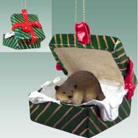 Beaver Gift Box Green Ornament