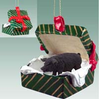 Pig Black Gift Box Green Ornament