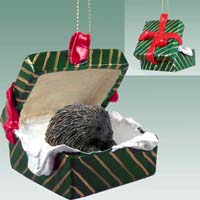 Porcupine Gift Box Green Ornament