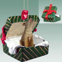 Coyote Gift Box Green Ornament